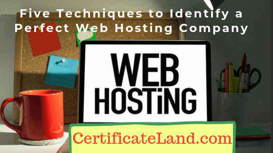 Find Web Hosting Company